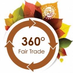 fall-into-fair-trade-banner